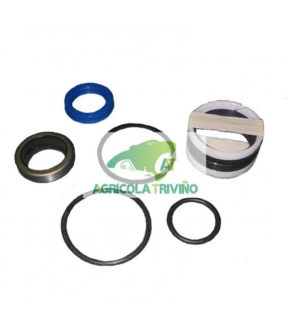 Kit reparación cilindro inclinación PV